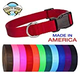 Country Brook Design 25 - Deluxe Nylon Dog Collars - Assorted Colors - Extra Small