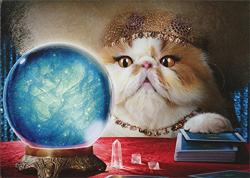 Avanti Cat Fortune Teller Pop Up Stand Out Funny Birthday Card