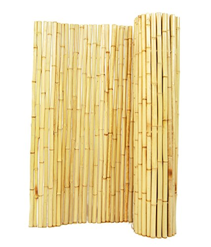 Forever Bamboo Natural Rolled Bamboo Fence 1in D x 6ft H x 8ft  L (Bamboo Screen Fence)