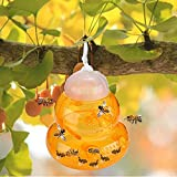 2 Pack Wasp Traps Outdoor Hanging, Hornet Yellow