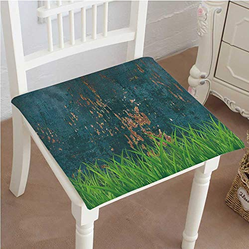 Mikihome Memory Foam Chair Pads Antique Old Planks American Style Western Rustic Wooden with Thick Growth of Grass Cushion Perfect Indoor/Outdoor 20''x20''x2pcs by Mikihome