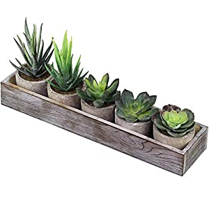 Supla Set of 5 Mini Fake Succulent Cactus Aloe Potted Plant Arrangements Decorative Assorted Potted Artificial Succulents Plants in Gray Pots Succulent Plants Wood Planter Arrangement 15
