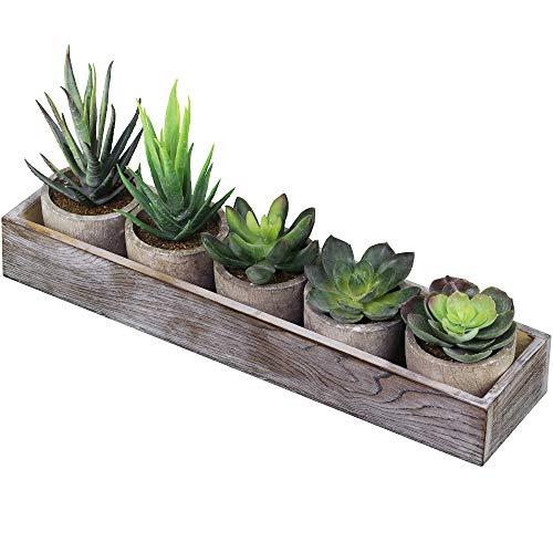 Supla Set of 5 Mini Fake Succulent Cactus Aloe Potted Plant Arrangements Decorative Assorted Potted Artificial Succulents Plants in Gray Pots Succulent Plants Wood Planter Arrangement -