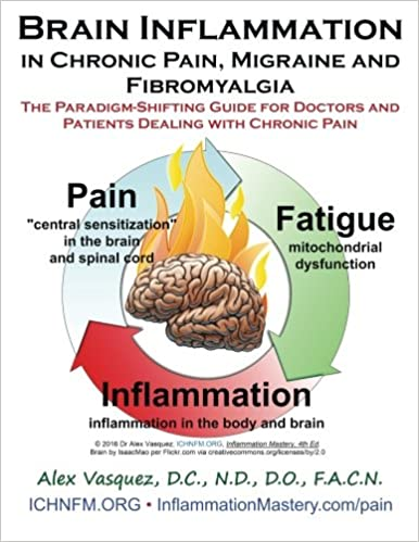 Brain Inflammation in Chronic Pain, Migraine and