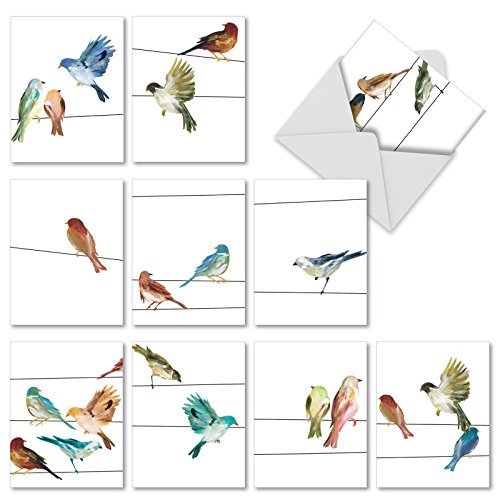 - M3318 High Wire Birds: 10 Assorted Blank All-Occasion Note Cards Feature Watercolor Bird Illustrations, w/White Envelopes.