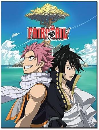 Manta – Fairy Tail – nueva Natsu y Zeref manta polar Anime ge57700: Amazon.es: Juguetes y juegos