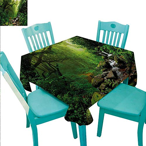 (Nature Elegance Engineered Christmas Tablecloth Into the Woods Idyllic Forest Greenland Dreamy Mystic Fresh Tropical View for Kitchen Dinning Tabletop Decoration 60