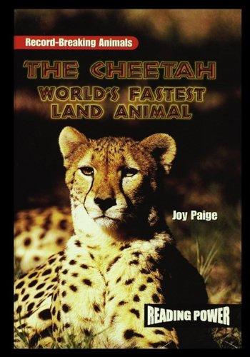 The Cheetah: World's Fastest Land Animal (10 Fastest Land Animals In The World)