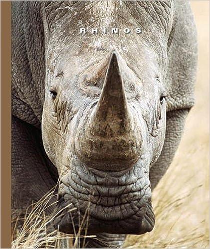 Rhinos (World of Mammals (Childs World))