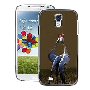 A-type Arte & diseño plástico duro Fundas Cover Cubre Hard Case Cover para Samsung Galaxy S4 (Love Birds Songbird Valentines Stork)