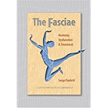 Fasciae: Anatomy Dysfunction and Treatment