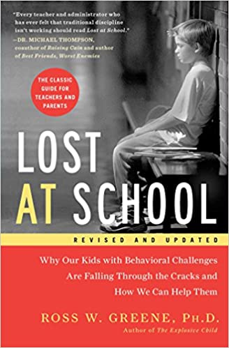 Image result for lost at school book