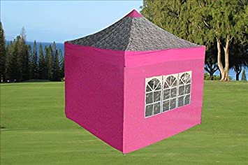 Delta 10 x10 Pop up 4 Wall Canopy Party Tent Gazebo Ez Pink Zebra – F Model Upgraded Frame Canopies
