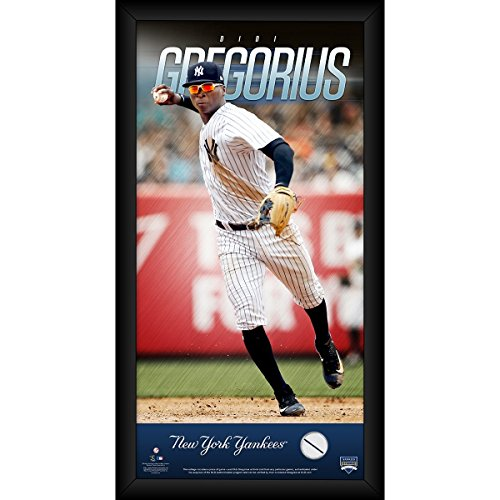 MLB New York Yankees Didi Gregorius 10 x 20 Player Profile With Game Used Jersey Swatch
