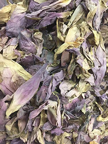 Sacred Lotus, Nelumbo nucifera, Pink, Petals (Organic) 1 Oz Free Shipping ~ Sacred Herbs and Spices from Schmerbals Herbals