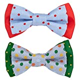 Blueberry Pet Summer Gift Box with Pack of 2 Handmade Dog Cat Bow Tie, Polka Dots Designer Bowtie Set, 4'' 2.5''