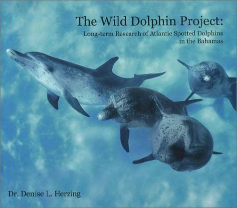 Spotted Dolphin - The Wild Dolphin Project: Long-term Recearch of Atlantic Spotted Dolphins in the Bahamas