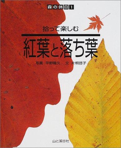 拾って楽しむ紅葉と落ち葉 (森の休日)