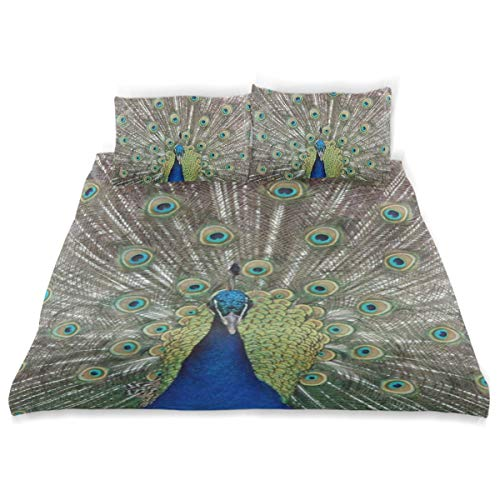 OSBLI Bedding Duvet Cover Set 3 Pieces Peacock and Feather Bed Sheets Sets and 2 Pillowcase for Teens