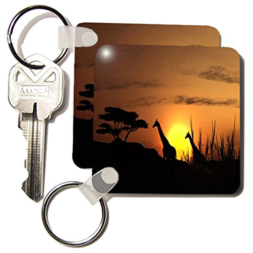 3dRose Pair Of Giraffes In The African Sunset.jpg - Key Chains, 2.25 x 4.5 inches, set of 2 (kc_98602_1)