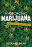 Hydroponic Marijuana: 3 Foolproof Ways to Grow