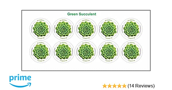 Amazon.com : 2017 Global Green Succulent International Forever ...