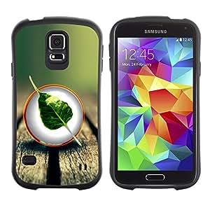 Paccase / Suave TPU GEL Caso Carcasa de Protección Funda para - Nature Wood Leaf Tree - Samsung Galaxy S5 SM-G900