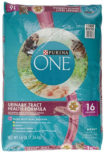 Purina O N E Special Care Cat Food Adult Urinary Tract