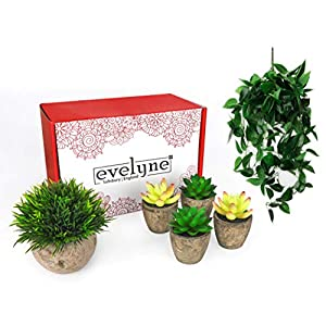 Evelyne 5pc Artificial Hanging...