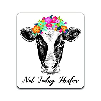 49137fd2a5c Amazon.com: Cow Not Today Heifer Vinyl Decal Sticker | Cars Trucks Vans  SUVs Windows Walls Cups Laptops | Full Color Printed and Laminated | 5  Inches ...