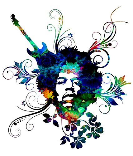 Jimi Hendrix Flowers Music Fun T-Shirt -003