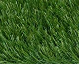 RealGrass RG 53SB-2 Landscape Series Meadow 5-by-18-Foot Residential Landscape Artificial Turf