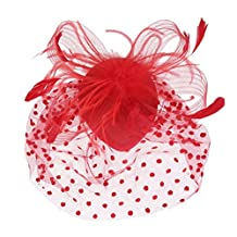 Tinksky Retro Style Bird Cage Mesh Bridal Face Veil Feather Fascinator Hair Clip Dress-up Accessories(Red)