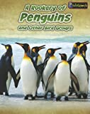 A Rookery of Penguins, Jilly Hunt, 1432964917