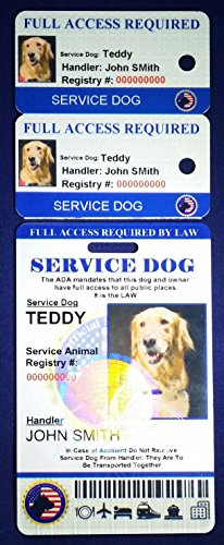 Holographic Service Dog ID + 2 Key Tags | Includes Registration to National Dog Registry by Xpress ID (Image #1)