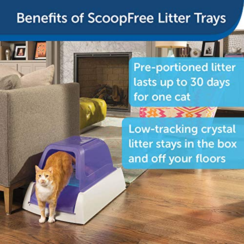 PetSafe ScoopFree Ultra Self-Cleaning Cat Litter Box - Automatic with Disposable Tray - Purple Covered