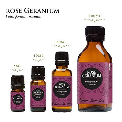 Rose Geranium 100% Pure Therapeutic Grade Essential Oil by Edens Garden- 10 ml