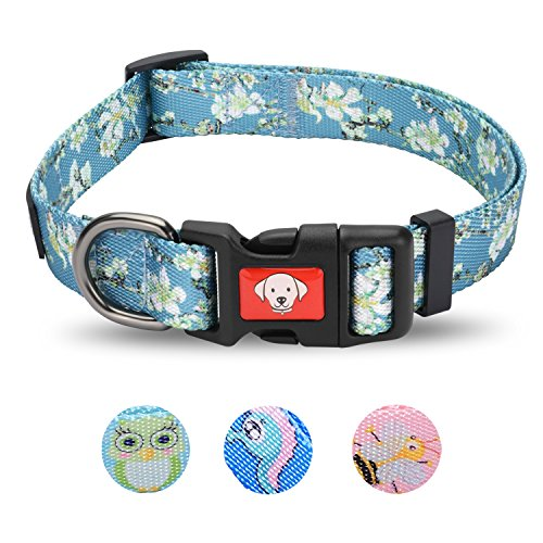 Losong Dog Collar, Fashion Durable Shiny Polyester Buckle Collars with Apricot Blossom Pattern, Adjustable Collar for Boy and Girl Dogs, Neck 13.8-20.9 Inch, Medium (Turquoise) ()