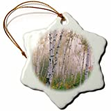 Vehfa Snowflake Ornament Autumn USA, New Hampshire. Birch Trees in clearing Fog. inch Snowflake Porcelain Ornament