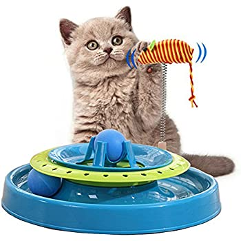 Cat Track Toy, Cat Roller Toy Ball Cat Interactive Toys Catch The Mouse and Track Exercise Ball Toy, Fun Interactive Cat Track Toys for Multiple Cats, ...