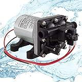 Shurflo Water Pump 4008-101-A65 3.0 GPM   RV 12V