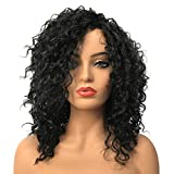Curly Wig, Wiginway Women Wigs Long Curly Black Wigs Synthetic Wig Colored Wigs Ladies Wigs Natural Looking 12 Inch