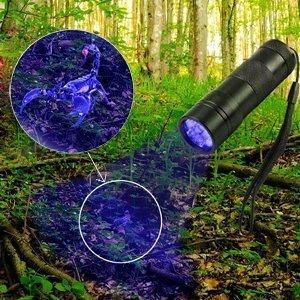 10 paquetes UV Negro Luz Linterna mascotas orina de detector para secas. orina manchas sus perros, gatos y roedores en Alfombras, cortinas, cortinas, ...