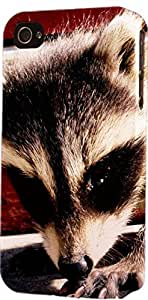 Baby Raccoon Dimensional Case Fits iPhone 5 or iPhone 5s