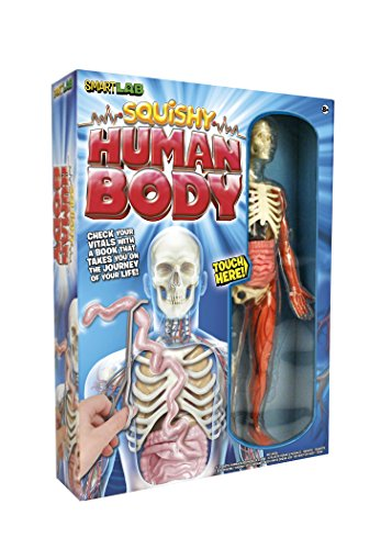 SmartLab Toys Squishy Human Body (Human Skeleton Model compare prices)