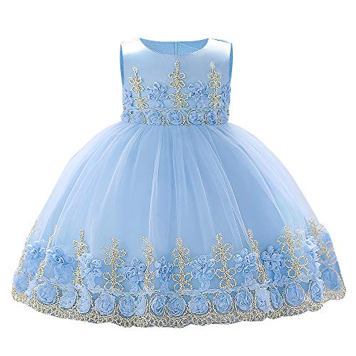 Girl Sleeveless Dress Embroidery Princess Lace Party Dresses Kids Ball Gown - Blue 0-1 Years]()