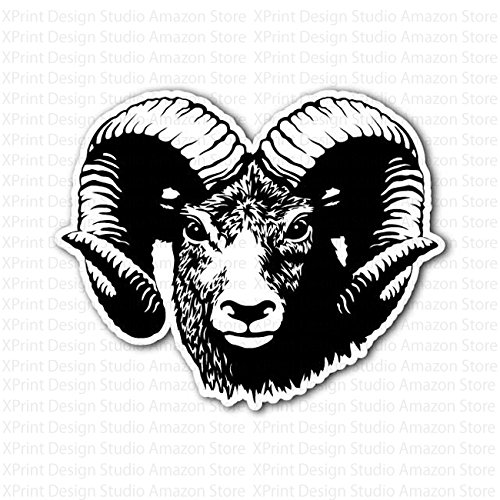 Ram Head Aries Bighorn Sheep (Aries Head)
