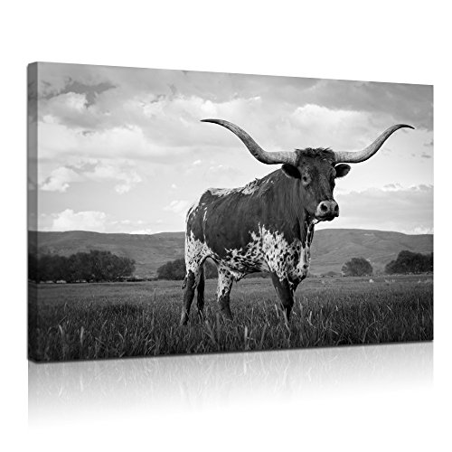 Farm White - Visual Art Decor Large Animals Canvas Wall Art Texas Longhorn in Sunset Farm Picture Prints Framed and Stretched Black and White Painting for Modern Home Living Room Decoration (24
