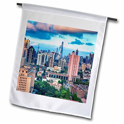 Pudong Shanghai China (3dRose Danita Delimont - Cities - Skyscrapers in downtown city skyline, Pudong, Shanghai, China - 18 x 27 inch Garden Flag (fl_257157_2))