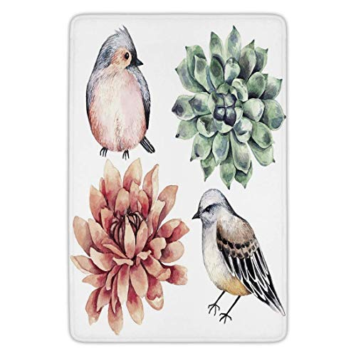 247 Almond (Bathroom Bath Rug Kitchen Floor Mat Carpet,Succulent,Cute Little Birds Succulent Inflorescence Meadow Wildlife Tropic Accents Decorative,Almond Green Peach,Flannel Microfiber Non-slip Soft Absorbent)